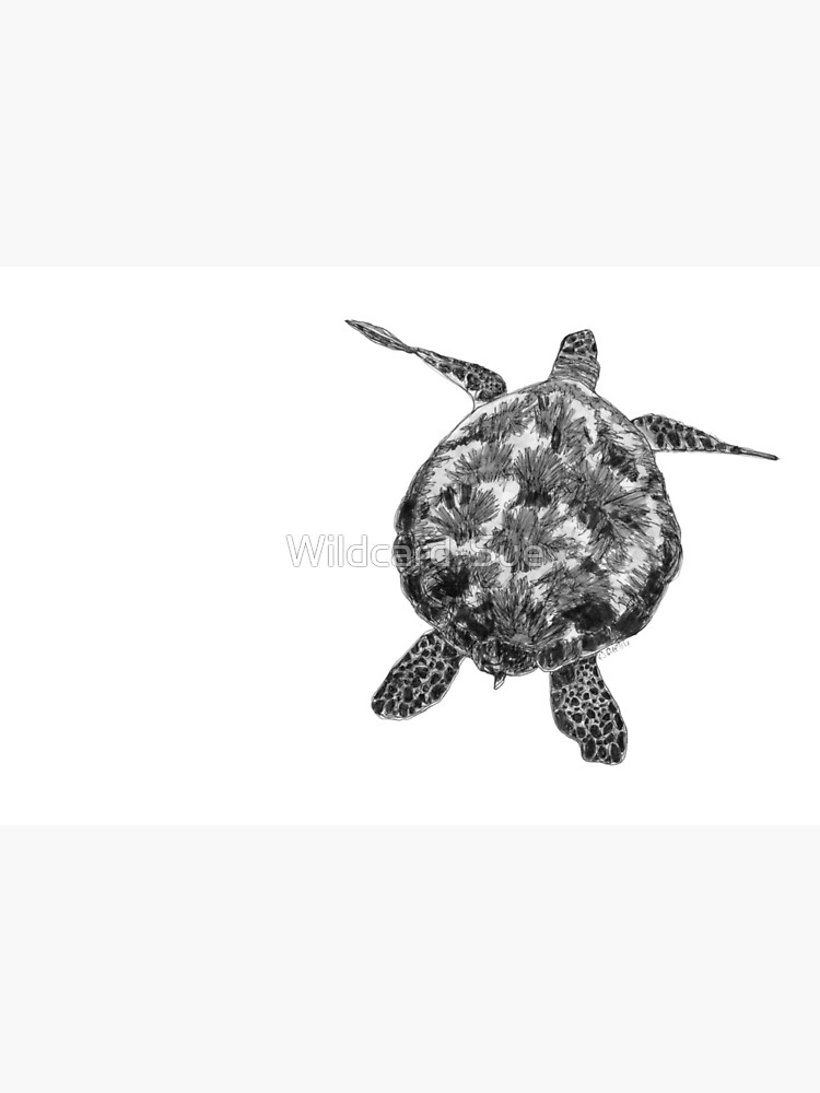 Jacki the Turtle by Wildcard-Sue