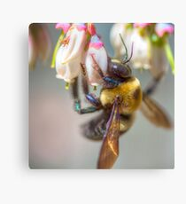 Mom and Baby matching Bee Back at 3:30 pm outfits Canvas Print