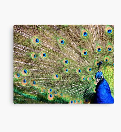Very proud ! Canvas Print