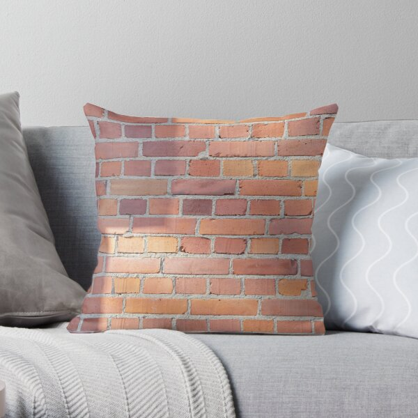 Red tile wall in the sun  Throw Pillow