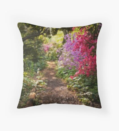 A walk down the Garden Path Throw Pillow