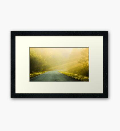 Lost in Morning Framed Print