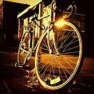 Shiny by KeriFriedman