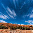 Walga in Moon Light by Robin Young