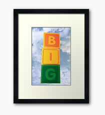 big assorted toy childs play blocks Framed Print