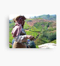 Woman Collects Tea, Munnar Canvas Print
