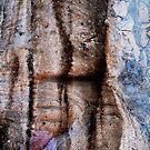 Canyon Dance by nadinecreates