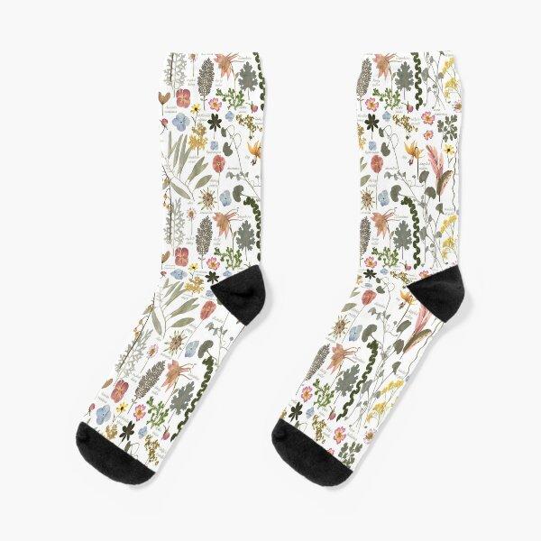 Botanical Sketchbook Pressed Flower Garden Socks