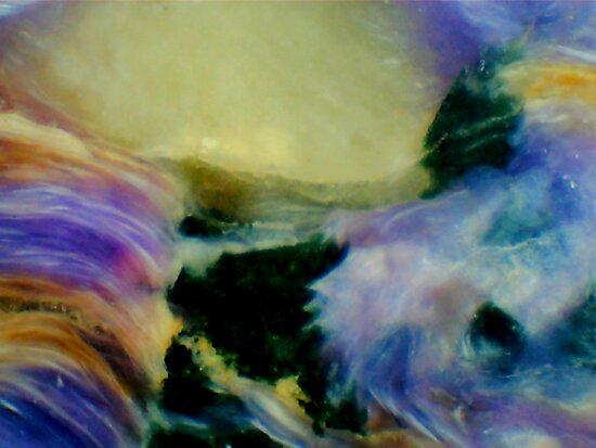Sunset in an Alien Land by Stephanie Bateman-Graham