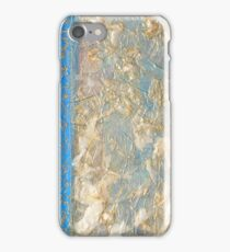 Jardin Tunisien iPhone Case/Skin