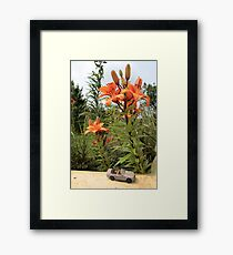 giant land Framed Print