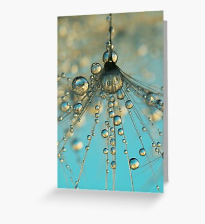 Dandy Shower Greeting Card