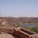 Looking out from Ranthambore Fort by SerenaB