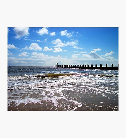 A Bird Watches The Waves And The Sea's Retreat! Photographic Print