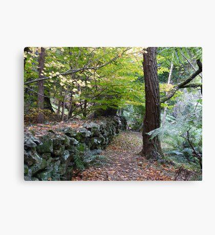 Mt Wilson Canvas Print