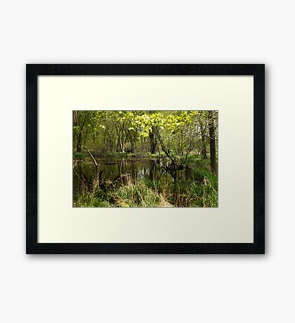 White River Landscape 6749 Framed Print