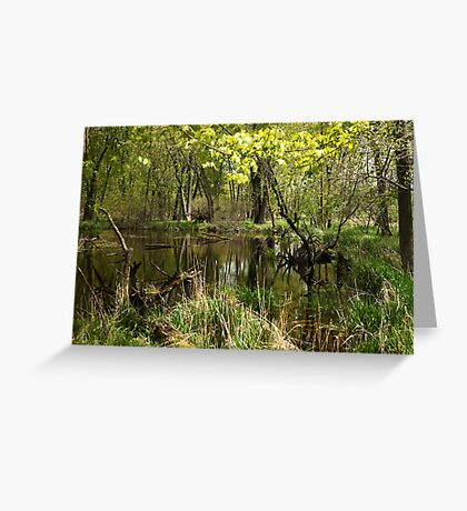 White River Landscape 6749 Greeting Card