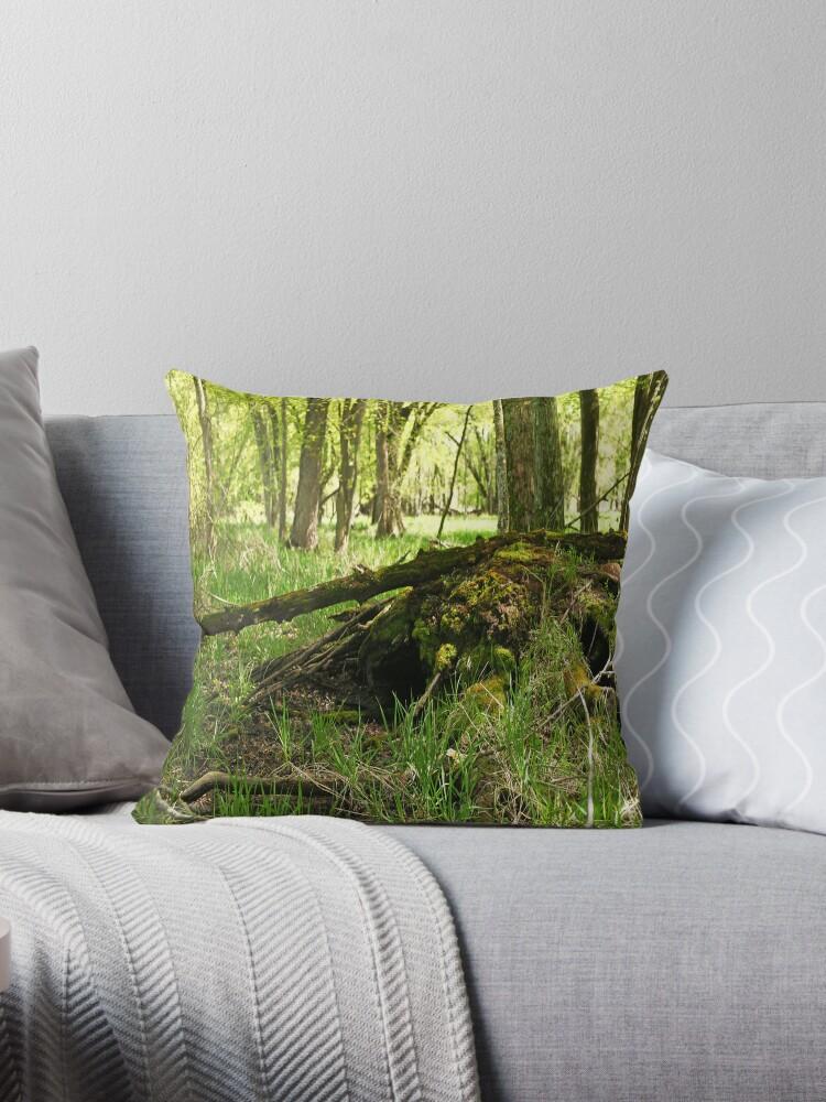 White River Marsh Landscape 6782 by Thomas Murphy