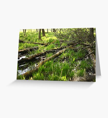 White River Landscape 6810 Greeting Card