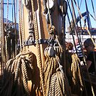 Tall Ship Rigging and Ropes by Sandra Lee Woods