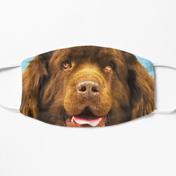 Brown Newfie Mask Flat Mask