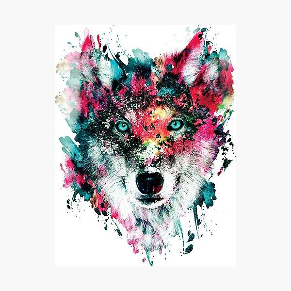 Wolf II Photographic Print