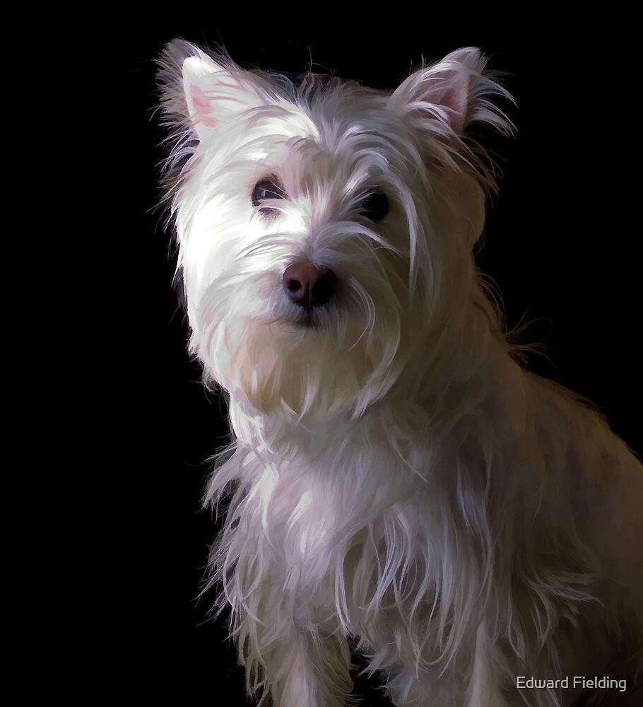 West Highlands White Terrier Puppy by Edward Fielding