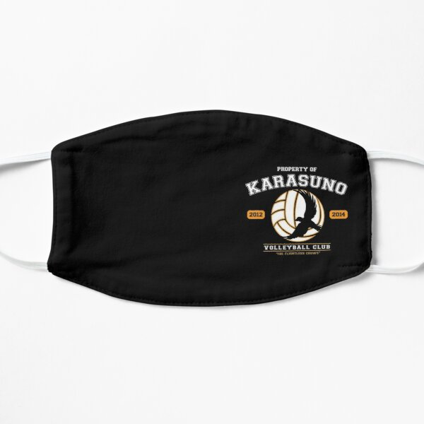TEAM KARASUNO Flat Mask