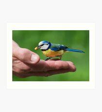 HAND FEEDING -II- Art Print
