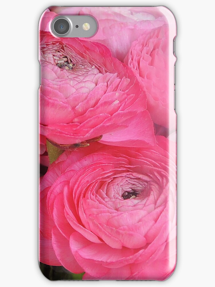 Ranunculus IPhone case by Heather Thorsen