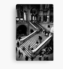 Motion - Natural History Museum Canvas Print