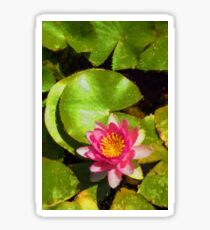 Pretty in Pink - a Waterlily Impression - Vertical Sticker