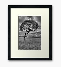 Character -  Somewhere Near Oberon, NSW - THe HDR Experience Framed Print