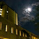 Hesburgh Library, Notre Dame, at Night by seanh