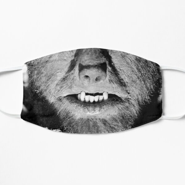 The Wolfman Mask