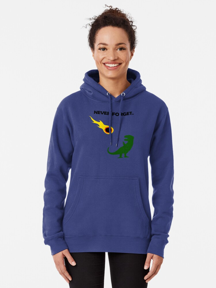 Alternate view of Never Forget (Dinosaurs) Pullover Hoodie