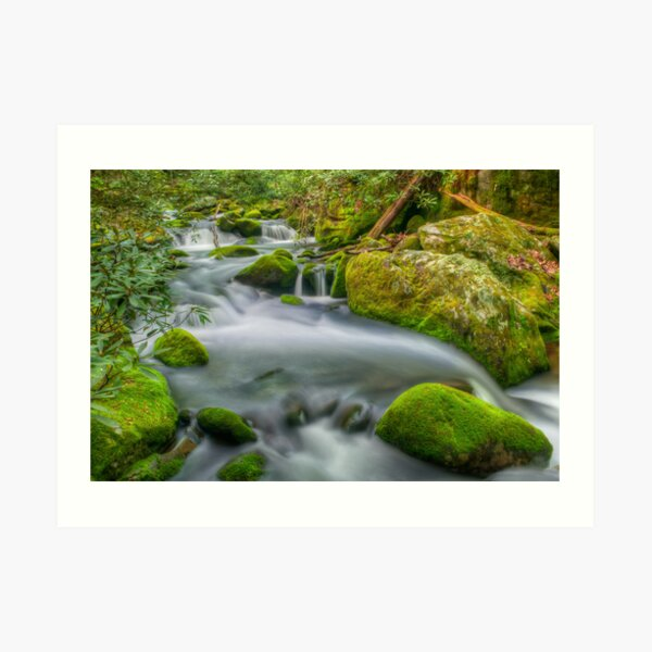 Roaring Fork River Art Print