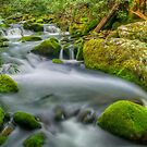 Roaring Fork River by JHRphotoART