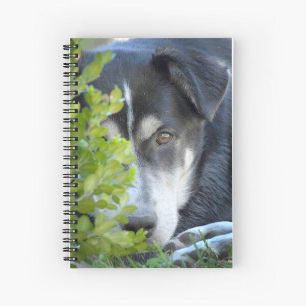 Misha Spiral Notebook