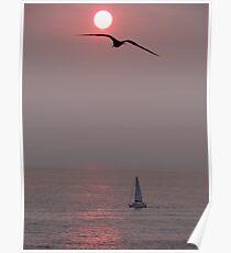 We Are Sailing - Estamos Navegando A Vela Poster