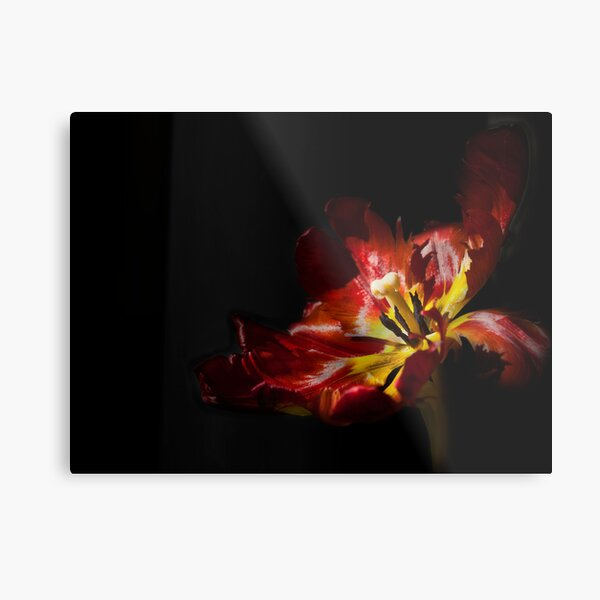 Gleam With Luster Redux Metal Print