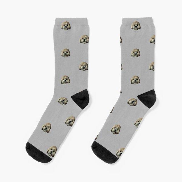 Brown Lhasa Apso Socks
