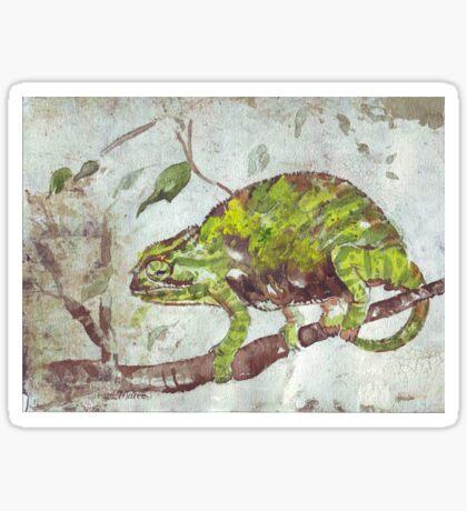 Chameleon (Chamaeleonidae) Sticker