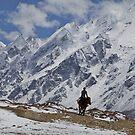 Himalayan horseman by John Spies