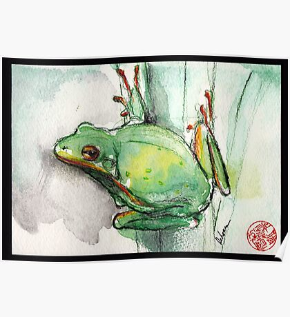 Green Tree Frog - watercolor and prisma pencil painting Poster