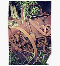 Rustic and Rusty Poster