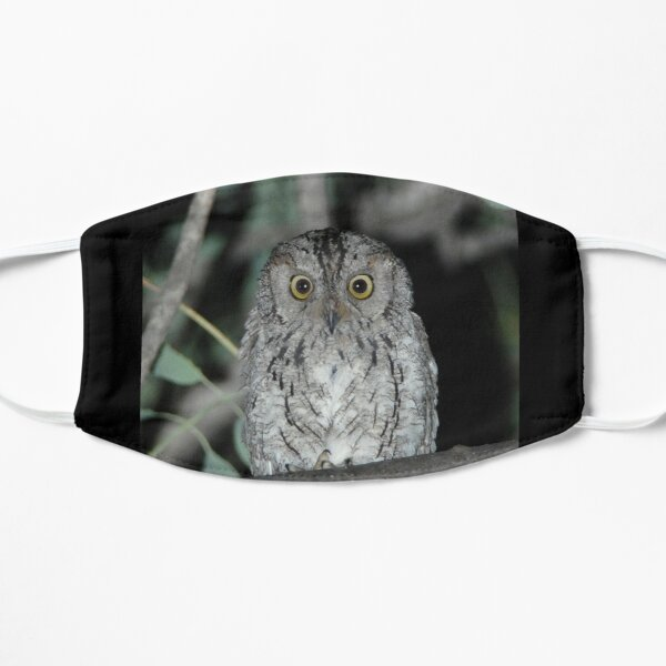 African Barred Owlet Mask