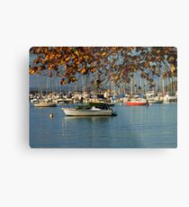 Crawley Bay Metal Print