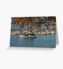 Crawley Bay Greeting Card