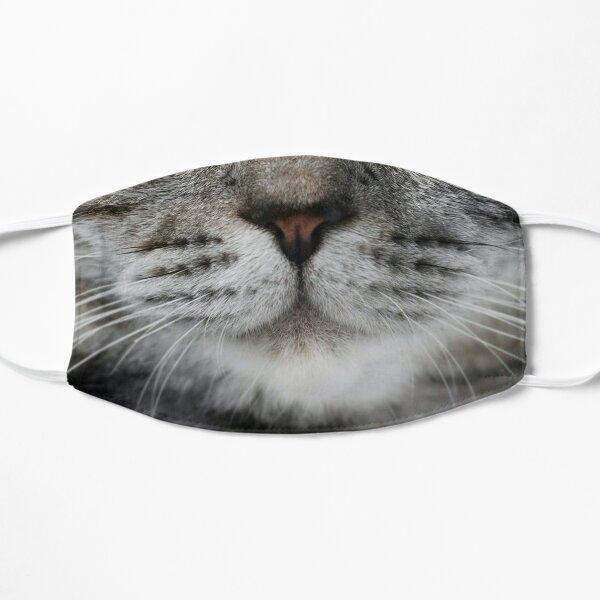 Masque pour chat Masque sans plis